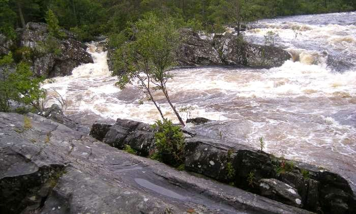 Wild Water near Queensview